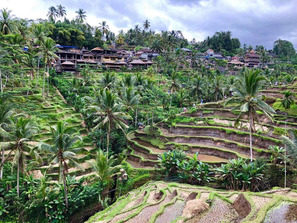 Ubud top 5 places in Bali