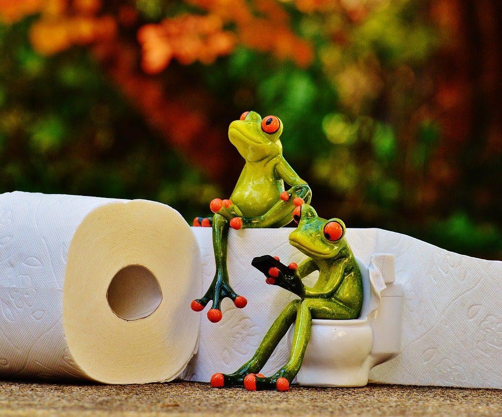 toilet paper sick in india