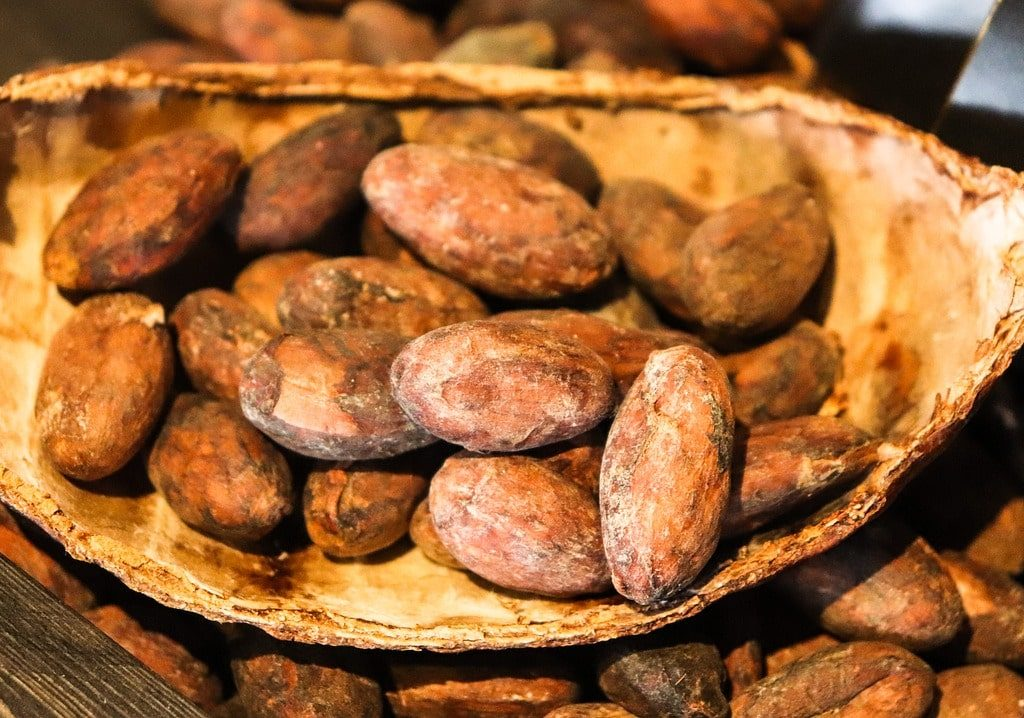 vegan cacao seeds